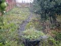 Tidying and Turfing