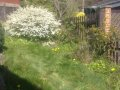 A Typical Sloping Garden